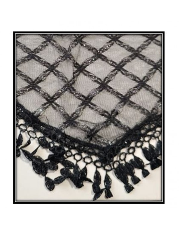 Black Mantilla with threads of Silver