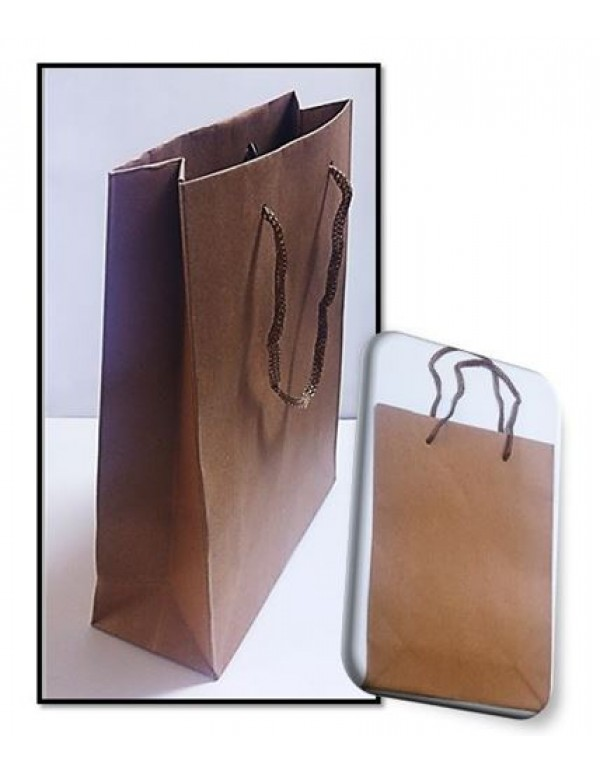 Brown Gift Bag - Medium