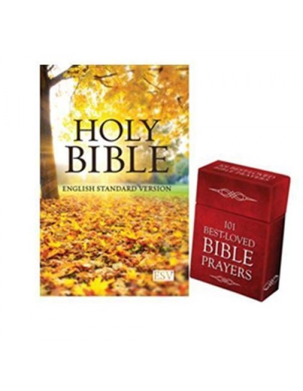 Bible and Box of Blessings Special - Autumn Edition